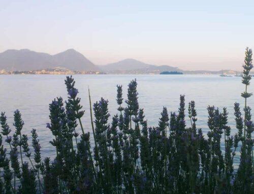 Vakantie Lago Maggiore met kinderen; tips bezienswaardigheden en uitjes