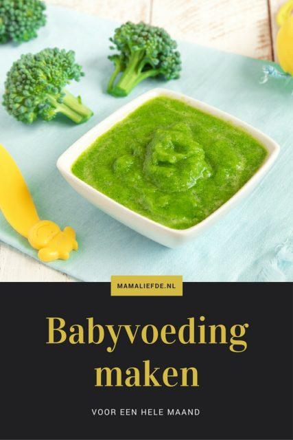 Geen zin om iedere avond apart te koken voor je baby? Met deze recepten maak je in een avond zelf babyvoeding voor de hele maand! - Mamaliefde.nl