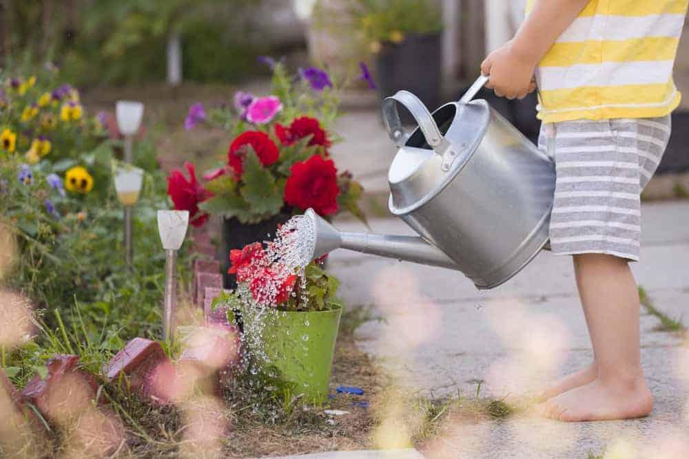 Tuinieren met kinderen -Mamaliefde.nl