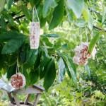 DIY:L Recept voor vetbollen - Mamaliefde