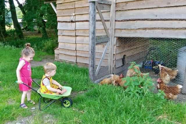 Kamperen bij de boer; het betere boe