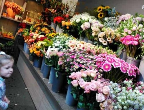 Bloemen en kinderen