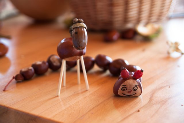 Top Herfst: knutselen met kastanjes voor peuters en kleuters en #SA33