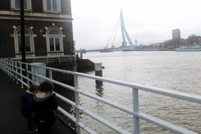 Villa Zebra Rotterdam - Mamaliefde