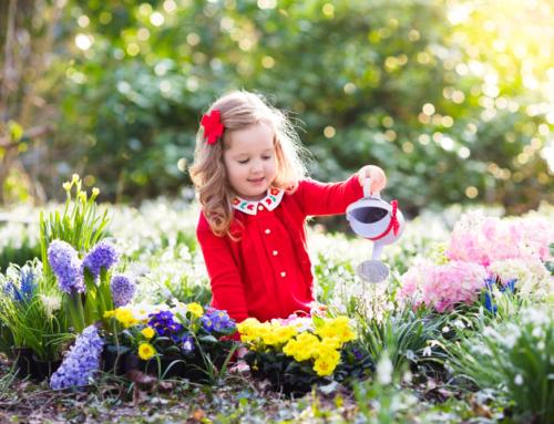 Spelletjes & activiteiten in de natuur voor de lente