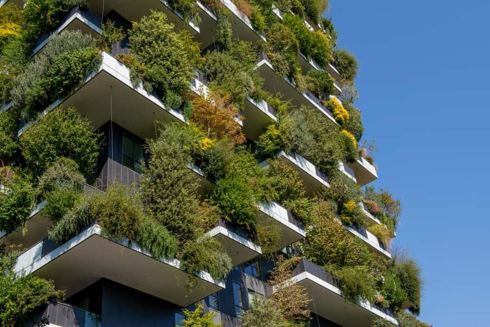 Verticale Tuin Binnen : Verticale tuin schutting; tuinieren op klein oppervlakte binnen en