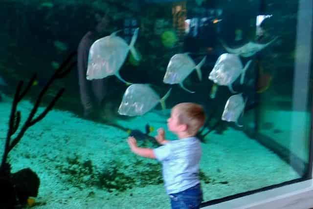 Vakantie met kinderen Denemarken Djursland Jutland - Mamaliefde.nl