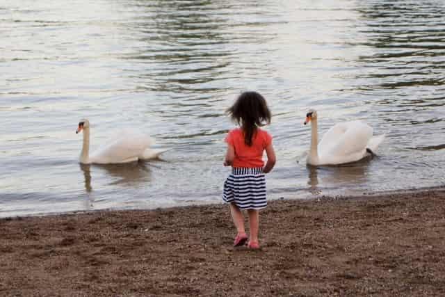Vakantie kinderen Kroatië Karlovac groene hart - Mamaliefde.nl