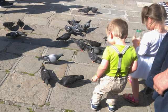 De 12 leukste bezienswaardigheden / activiteiten / uitstapjes in Venetië: San Marco Plein - Mamaliefde.nl
