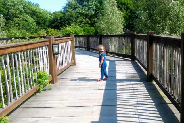 Ree Park Safari Ebeltoft Danmark - Mamaliefde.nl