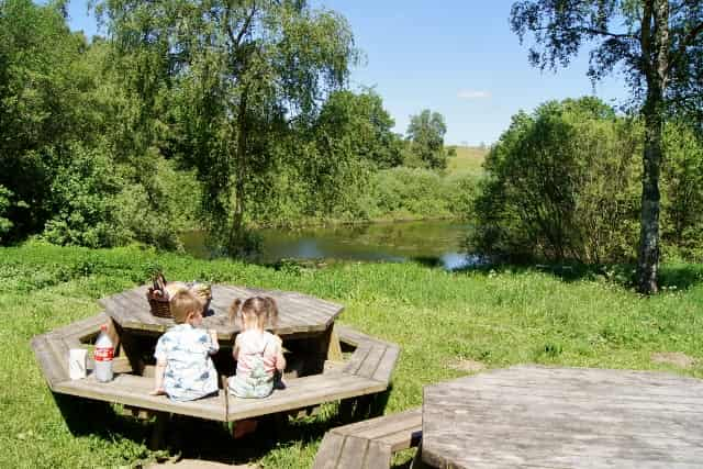 Natur Park Mols Bjerge: Ringelmose bos - Mamaliefde.nl