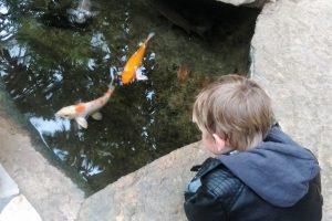 Dagje uit: Zwembad Aqua Mundo in Center Parcs Het Heijderbos - Mamaliefde.nl
