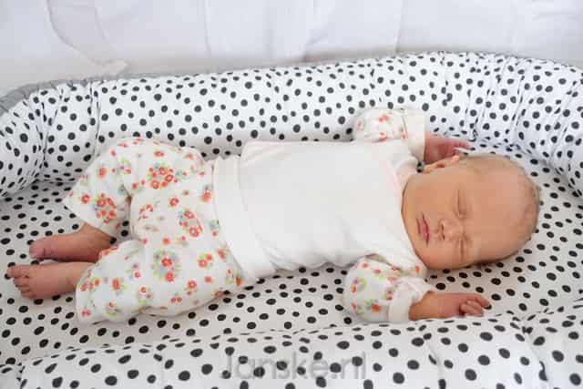 Babynestje maken met patroon of goedkoop kopen in sale? Van done by deer tot sleepyhead, Jollein of Prenatal in roze, mintgroen of van wafelstof. - Mamaliefde.nl
