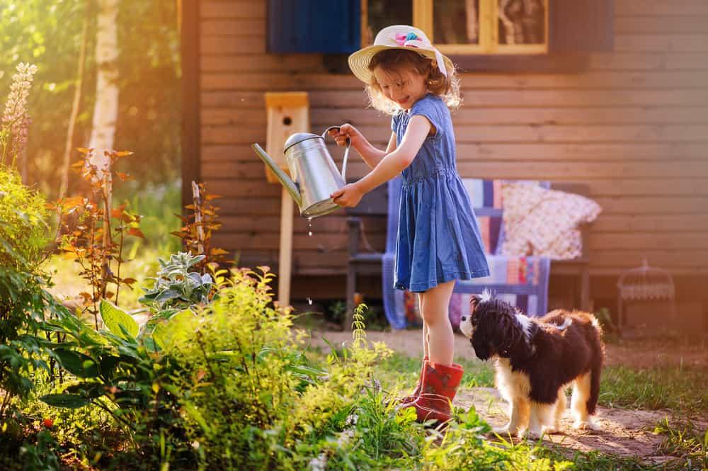 Kindvriendelijke achtertuin; tips voor vaste tuinplanten maar ook in kleine tuin - Mamaliefde.nl