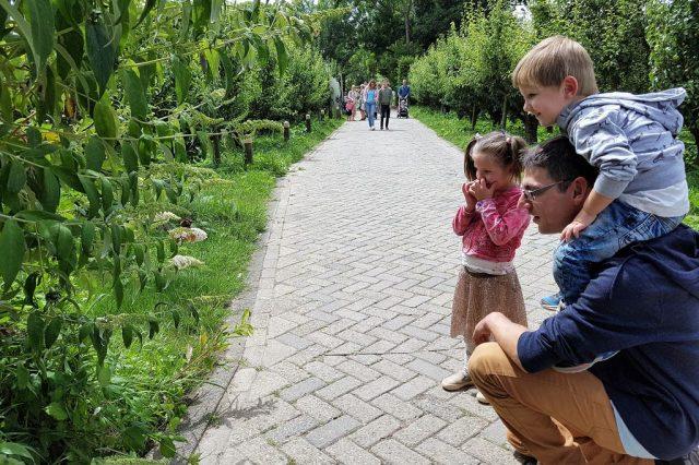 De Leukste Natuurspeeltuinen Speelbossen En Speelnatuur Van