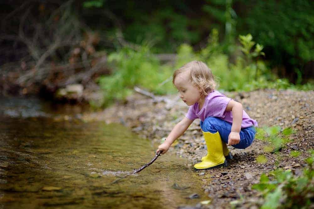 De leukste mooiste bossen van Nederland met kinderen - Mamaliefde.nl