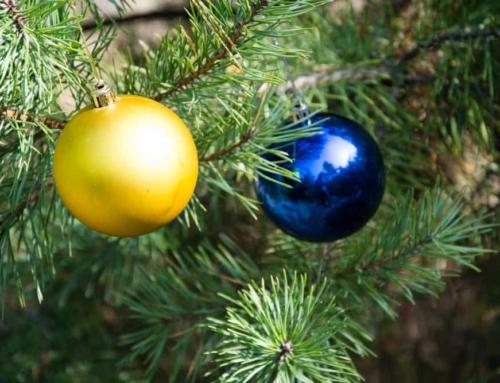 Tips voor het kopen van een kerstboom en hoe te versieren.
