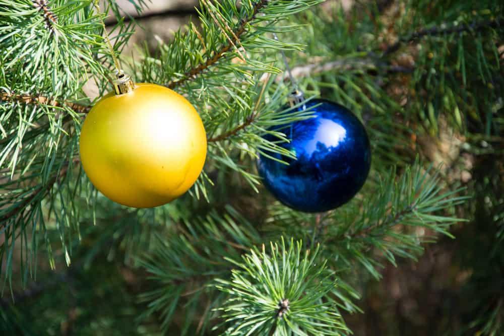 Tips voor het kopen van een kerstboom, inclusief dingen zoals verhoging voor onderkant of wat te doen met weinig takken en hoe deze te versieren. Van verlichting tot en met ballen en de piek. - mamaliefde.nl