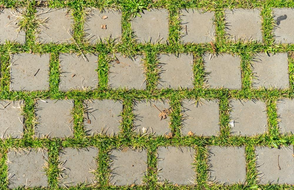 Kunstgras Op Tegels : Wat is het beste; kunstgras echt gras of rubberen tegels; voor en