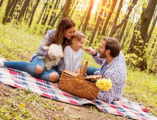 Top 100 leuke, gratis of goedkope uitjes met kinderen of dagje weg met gezin (onder 10 pp)