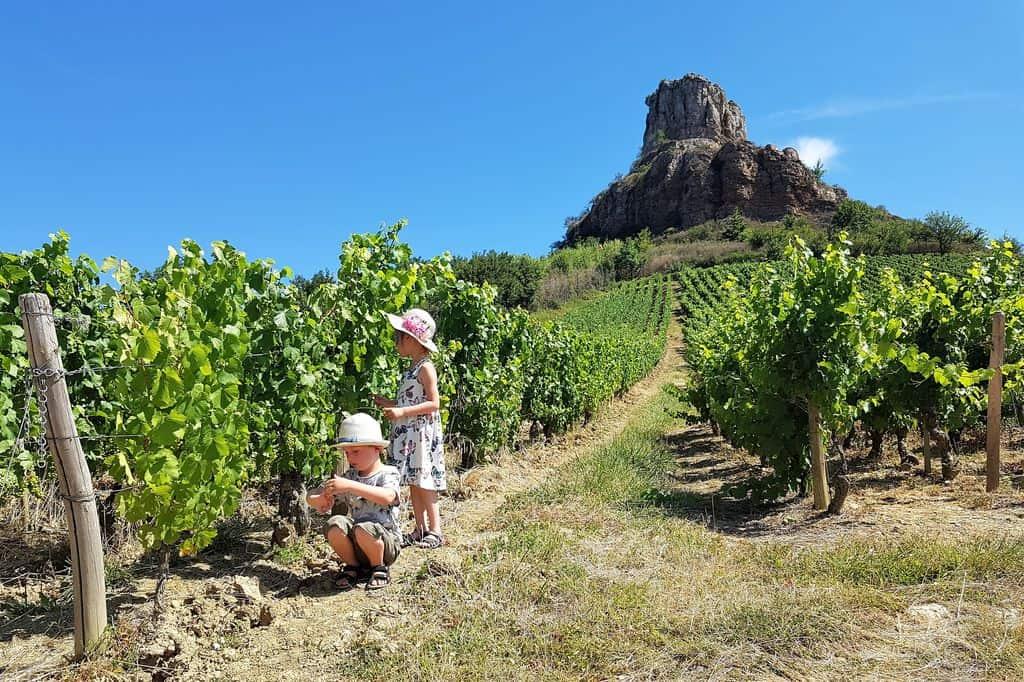 Zuid-Bourgogne (Bourgondië) met kinderen - Mamaliefde.nl