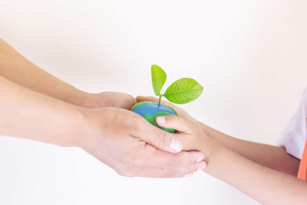 10 tips om kinderen te betrekken bij een duurzaam leven binnen het gezin - Mamaliefde.nl