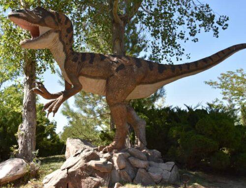 Dino uitjes; van museum tot park, tentoonstelling en evenementen in Nederland