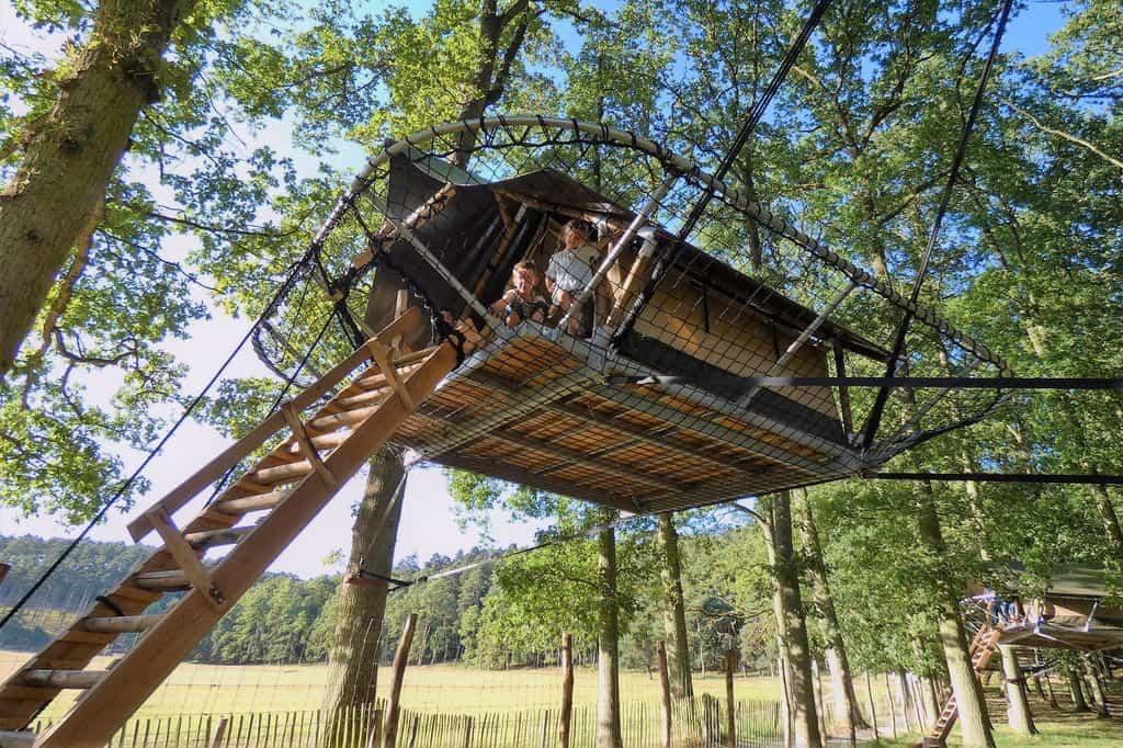 Overnachten in een tree-tent bij de Grotten van Han in het wildpark? Absoluut een bucketlist experience! - Mamaliefde.nl