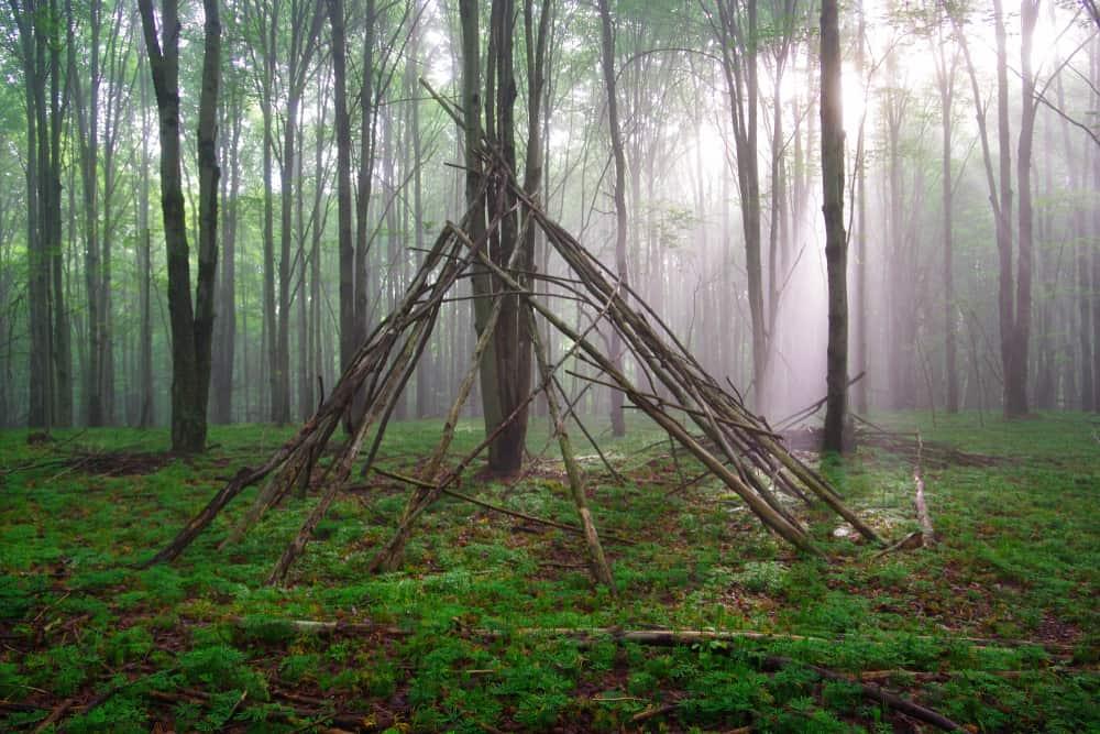 Super Spelletjes in het bos; voor een boswandeling, met opdrachten of GJ-14