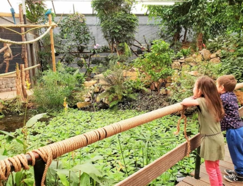 Dagje uit: Berkenhof's Tropical Zoo & Vlindertuin