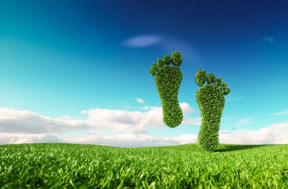 Ecologische voetafdruk verkleinen; 5 tips om te verminderen - Mamaliefde.nl