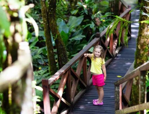 Indoor activiteiten met kinderen; met een zomers en tropisch tintje