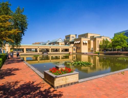 Overzicht musea in Den Haag