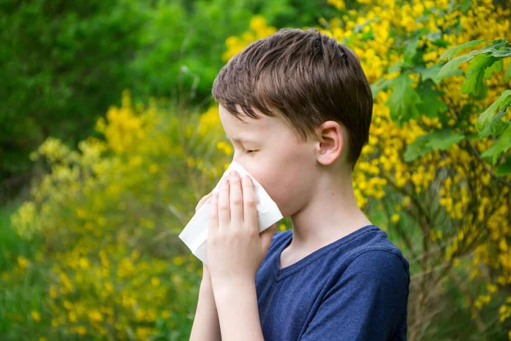 Hooikoorts bij kind; Van eerste symptomen tot tips zoals vsm en homeopatische middelen voor baby - Mamaliefde.nl