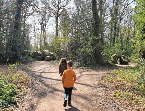 Hunebedcentrum Borger; Van oertijdpark tot archeologisch museum en grootste hunebed in Nederland