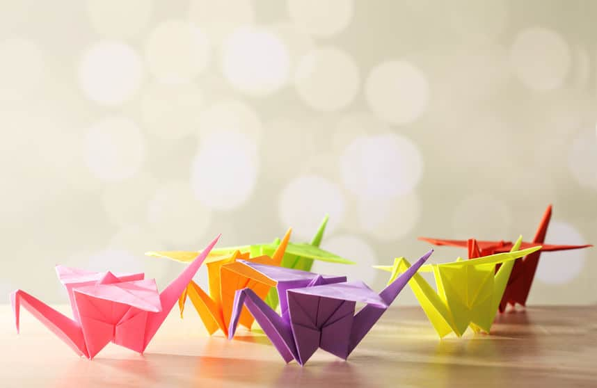 Origami vouwen met papier; voorbeelden moeilijk en makkelijk zoals dieren - Mamaliefde.nl