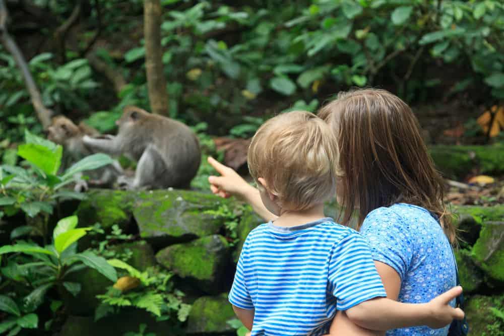 Overzicht kleine goedkope dierentuinen, vlindertuinen en aquaria Nederland - Mamaliefde.nl