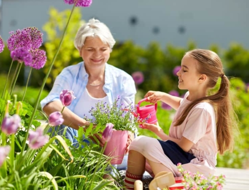 Oma weet alles; tips voor in de zomer / tijdens een hittegolf