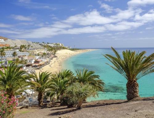 Fuerteventura; populaire bestemmingen, mooiste stranden en bezienswaardigheden