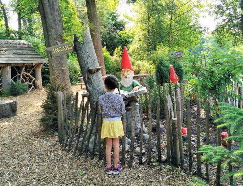 Kabouterpaden Nederland met kinderen