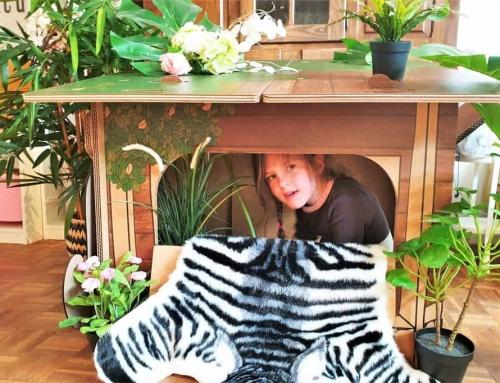 Van hut naar her; duurzaam hutten bouwen van karton