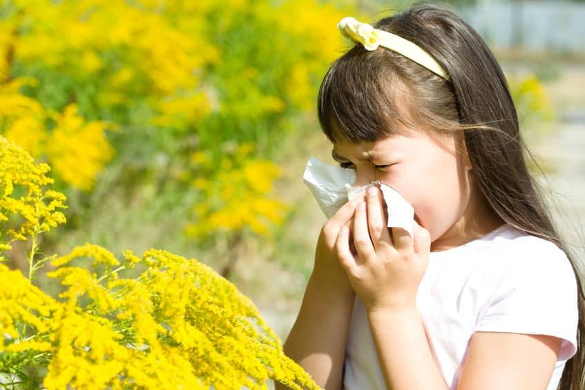 Overzicht allergieën kinderen - Mamaliefde.nl