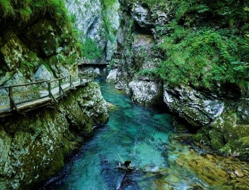 Vintgar kloof; met het gezin op avontuur in Slovenië