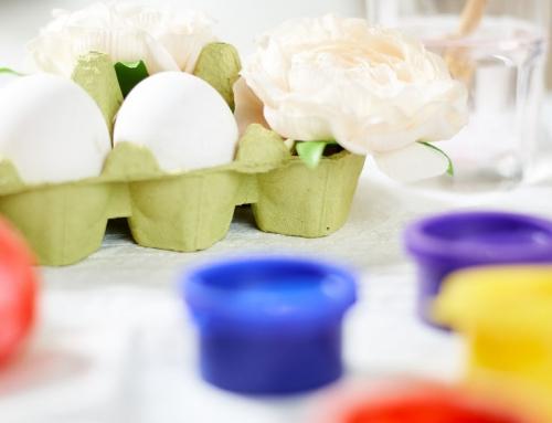 Knutselen met eierdozen