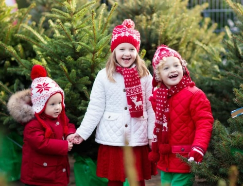 De Kerstshows die je gezien moet hebben