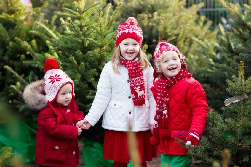 Kerstshows 2020; Overzicht van mooiste shows bij tuincentrum per provincie - Mamaliefde.nl