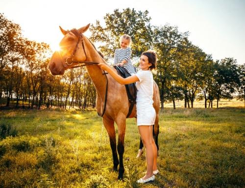 Paardrijden voor kinderen; van dagje rijden tot proefles