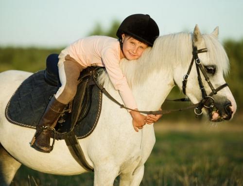 Pony vakantie; vakantiepark met paard bij het huisje of op de boerderij