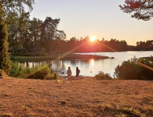 Bezienswaardigheden en uitjes Småland