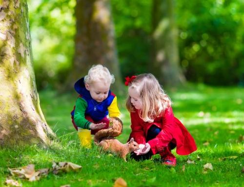 Ontdekkend leren met jonge kinderen. Wat is het en hoe pak je het aan?